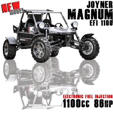 motorcycle photo JOYNER - MAGNUM 1100 Sport(2016) BUGGY